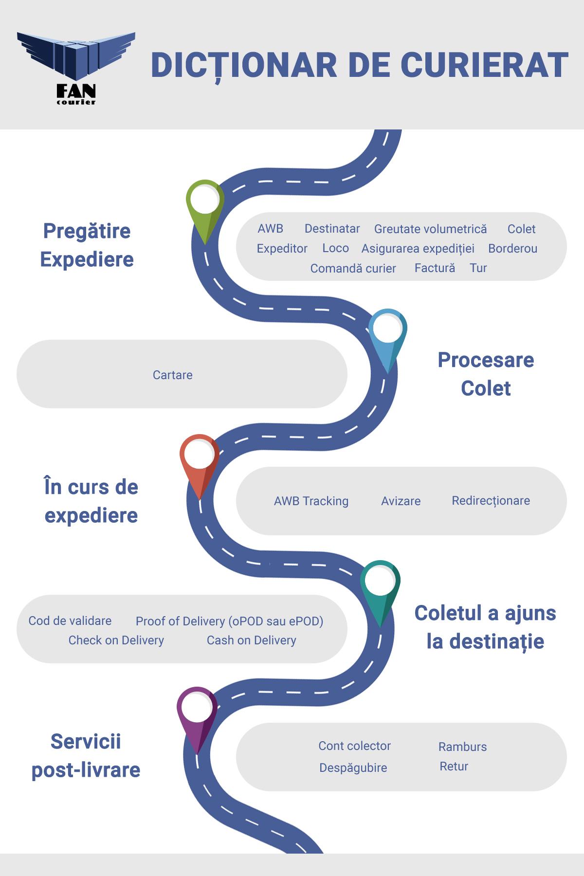 infografic-fan-2
